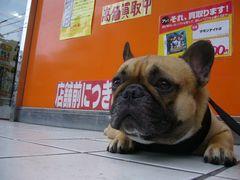 店舗前のワン太郎