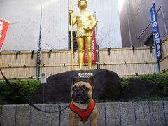 かっぱ河太郎像前のワン太郎1