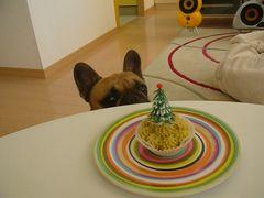 ケーキとワン太郎