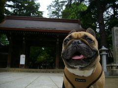 神社前のワン太郎